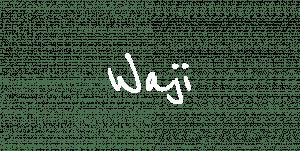 Waji Mental Healthcare waji1-300x151 Waji for First Responders
